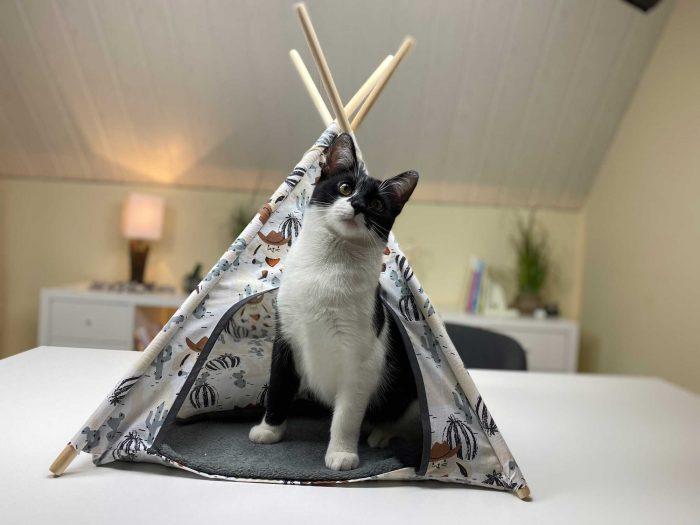 Katzenzelt, Katzentipi nähen